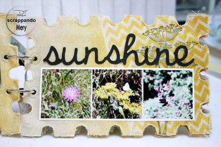 SUNSHUNE2